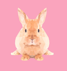 low poly rabbit vector image