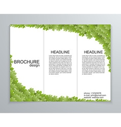 abstract brochure design template Spring green vector image