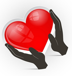 Heart in Hands Isolated on White Background vector image vector image