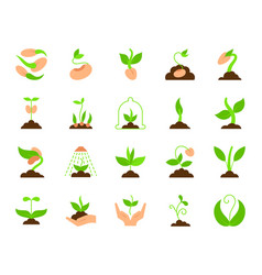 sprout simple flat color icons set vector image