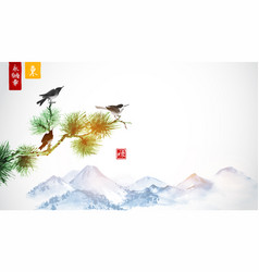 three little birds on pine tree branch and far vector image