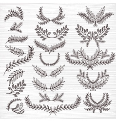 Set of hand-painted twigs vector image
