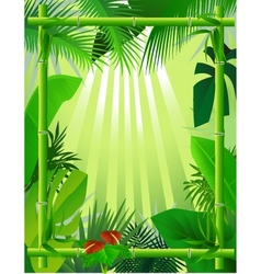beautiful forest background with bamboo frame vector image