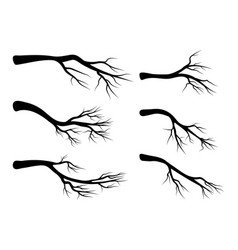bare branch set symbol icon design beautiful vector image