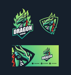 dragon concept design template vector image