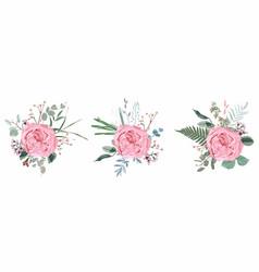 floral bouquet design garden pink rose flower vector image