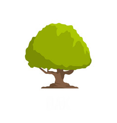 Oak tree icon flat style vector