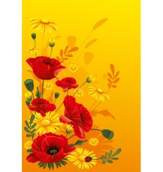 Poppies and daisies vector