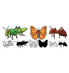 Set insect cartoon vector