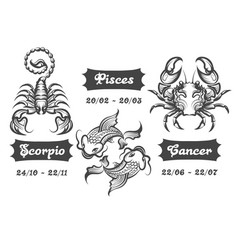 zodiac signs of scorpion fishes and cancer vector image