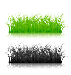 green and black silhouette grass isolated on vector image