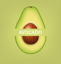 Avocado isolated and green background with text vector