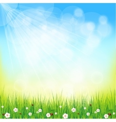 Green sunny natural background vector image