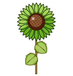 Single flower in green vector