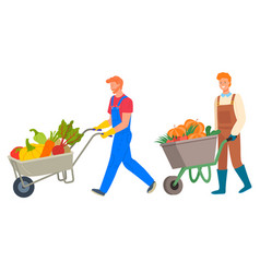 Wheelbarrow metal cart loaded with vegetables vector
