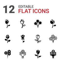 bouquet icons vector image