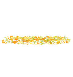 Fallen leaves on ground isolated vector