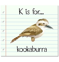 Flashcard letter k is for kookaburra vector