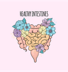 Good intestines medicine human health illus vector