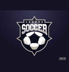 modern professional soccer logo for sport team vector image
