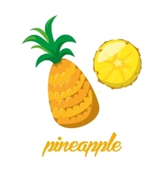 Pineaple fruits poster in cartoon style depicting vector