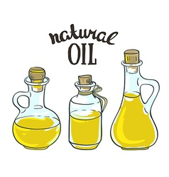 Set of bottles with sunflower linseed and olive vector image