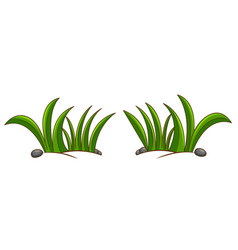 Two bushes on ground vector