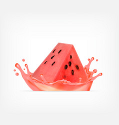 watermelon juice fresh fruit vector image