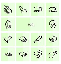 zoo icons vector image