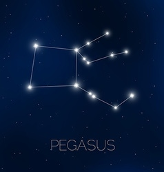 Pegasus constellation in night sky vector image