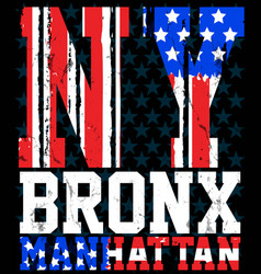 new york city america flag print and varsity for vector image