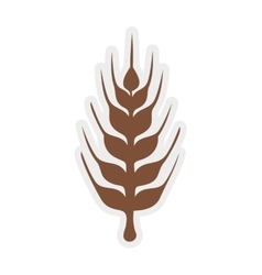 Wheat ears icon Grain design graphic vector image