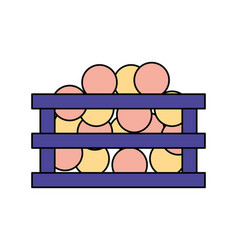 basket and balls on white background vector image