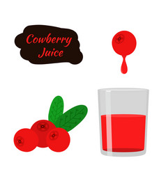 Berry juice red cowberry lingonberry cranberry in vector