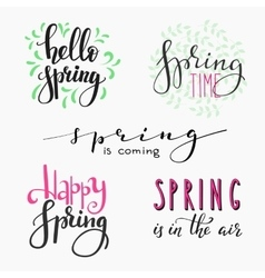 Hello spring lettering typography vector image