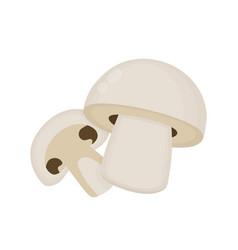 mushroom champignon flat cartoon vector image