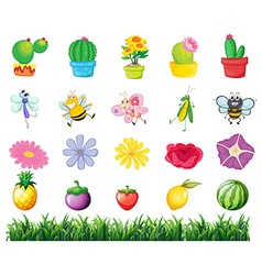 Plants and insects in the garden vector image vector image