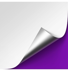 Silver corner of White paper on Violet Background vector image