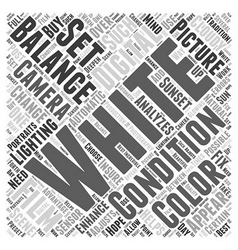 White Balance Word Cloud Concept vector image