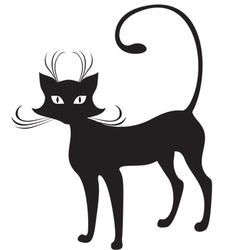 graceful cat vector image vector image