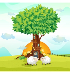Sheeps under tree house vector image