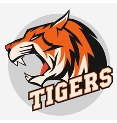 Angry Tiger Sport team emblem vector