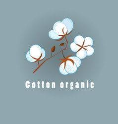 Graphic of cotton organic vector
