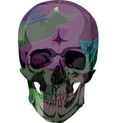 human skull bones skeleton dead vector image