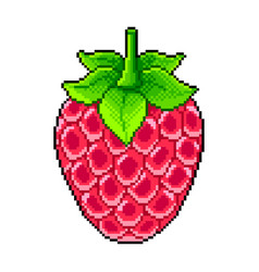 pixel fresh raspberry detailed isolated vector image