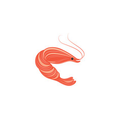 shrimp stylish sea food design element vector image