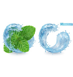 splash water and mint 3d realistic vector image