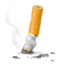 Realistic cigarette butt on white background vector