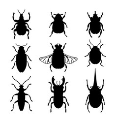 Bugs silhouettes set vector