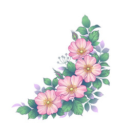 Hand drawn dog-rose bunch with pink flowers vector